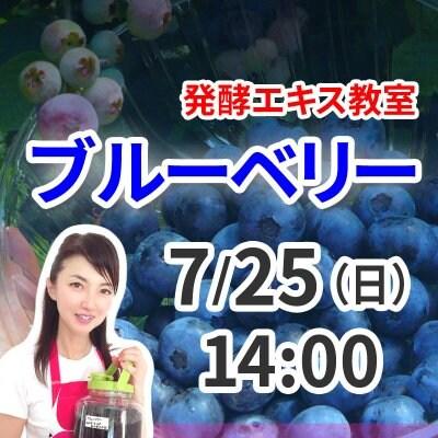 《7月25日(日)午後》発酵エキス教室「無農薬ブルーベリー」【現地払い】