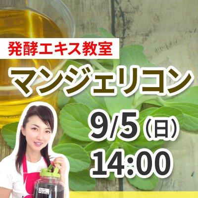 《9月5日(日)午後の部》発酵エキス教室「命草 マンジェリコン」【現地払い】