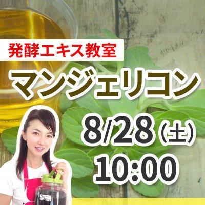 《8月28日(土)午前の部》発酵エキス教室「命草 マンジェリコン」【現地払い】