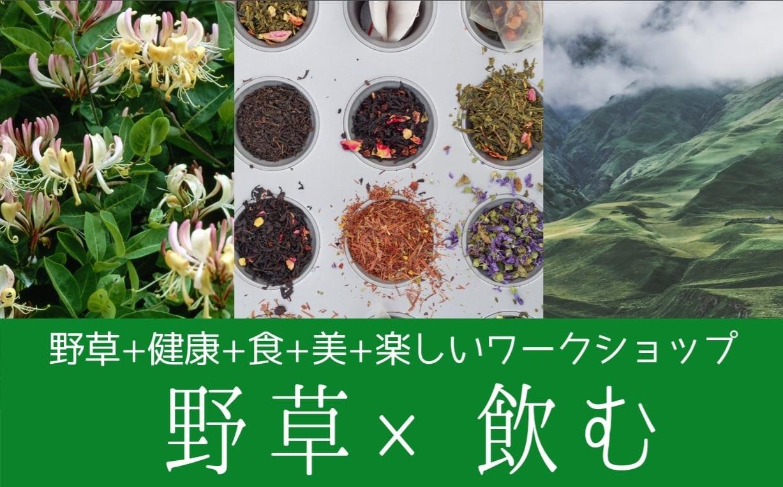 ❨終了❩自然の恵みを頂く、魔女のあとりえ入門編:薬草茶のイロハ、飲み比べ体験を提供@東京10/5のイメージその1