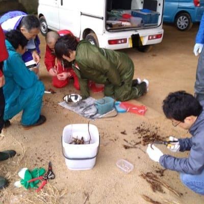 【昆虫食】フェモラータオオモモブトハムシとエスカルゴを食べる会2020 現地払いのみ 三重県松阪市