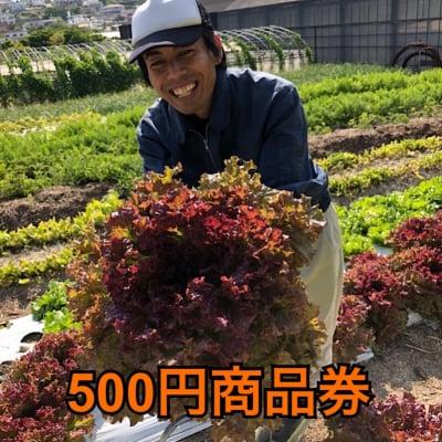 【現地払い専用】500円商品券