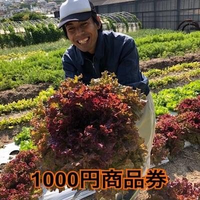 【現地払い専用】1000円商品券