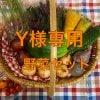 [Y様専用]沖縄無農薬野菜のーぶーおすすめセット