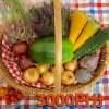 沖縄無農薬野菜のーぶーおすすめセット3000円分