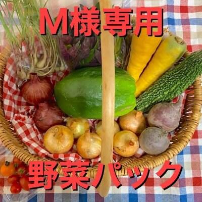 [M様専用]お野菜パック