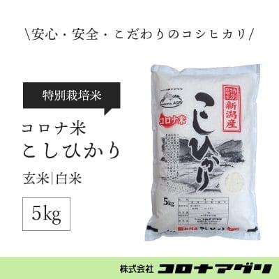 【白米/5キロ】コロナ米こしひかり/新潟産【特別栽培米】【送料無料】