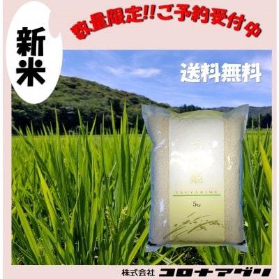 【限定予約販売】R1年産コロナ米つや姫/宮城県産【特別栽培米】精米5kg