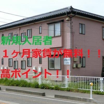 家賃1年チケット ロイヤルハイツ2 新潟県西蒲原郡弥彦村中山328