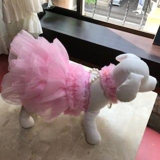 ✫新品 犬服パール付チュチュウエディングドレス Мサイズ