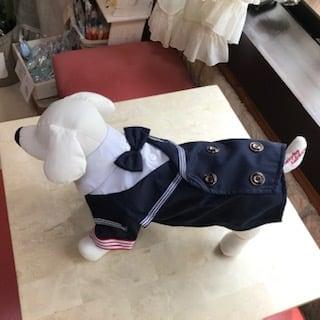 ✫新品 犬服マリン風ブレザータイプ(蝶ネクタイ付)