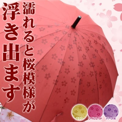 【期間限定1,000円値下げ】あら不思議!?濡れるとさくら模様が浮き出ます。 16本骨 さくら傘