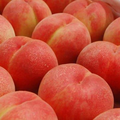 【まどか2kg】福島県の果樹園から産地直送【甘い桃】※数量限定
