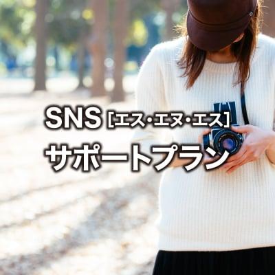 SNSサポートプラン(3ヶ月お試しコース)