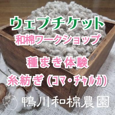 【5月11日(土)】和棉ワークショップ 種まき体験・糸紡ぎ(コマ・チャルカ)