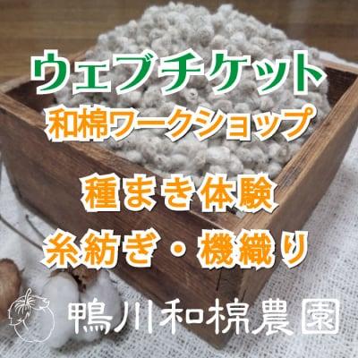 【5月19日(日)】和棉ワークショップ 種まき体験・糸紡ぎ・機織り