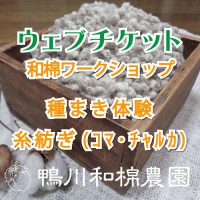 【5月19日(日)】和棉ワークショップ 種まき体験・糸紡ぎ(コマ・チャルカ)