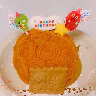✴︎神山鶏と自然栽培の野菜で作ったケーキ✴︎ 犬猫対応 一匹用 お誕生日やうちの子記念日など大切な日に