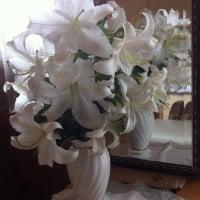 『桜サローネ碧南』6月22日14時 楽しくきれいになる!美のきらめきお茶会 チケット