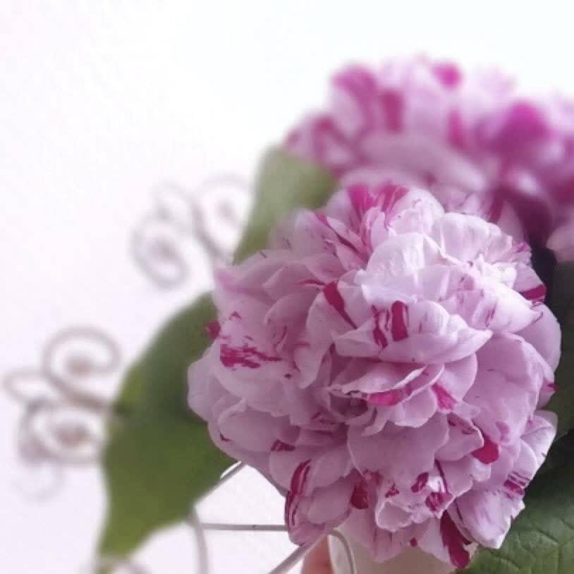 桜サローネ会員専用特別セレクト、コスメチケット10000のイメージその1