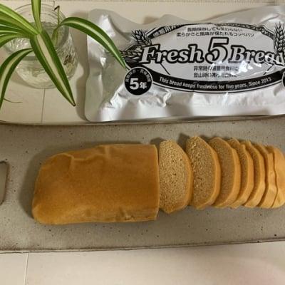 防災備蓄、登山用非常食コッペパン「フレッシュ5ブレッド」 長期保存、...