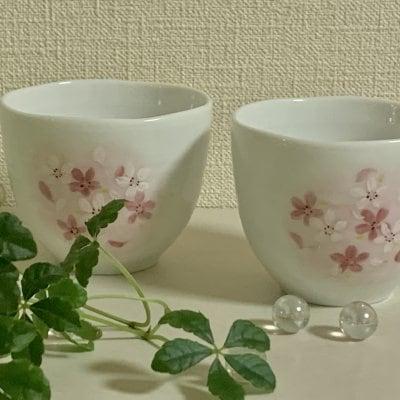 桜模様 手描き煎茶碗2個組