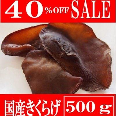 [SALE コロナ支援・訳あり価格]肉厚ぷりぷり 生きくらげ  500g【期間限定5月〜12月】熊本県産