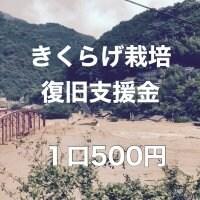キクラゲ栽培復興支援〜球磨川氾濫 被災者支援〜