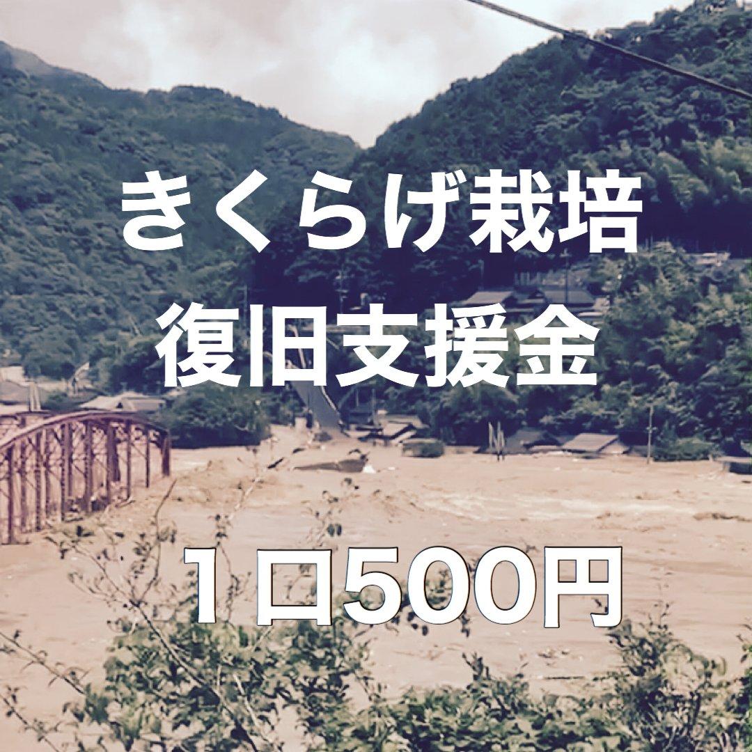 キクラゲ栽培復興支援〜球磨川氾濫 被災者支援〜のイメージその1