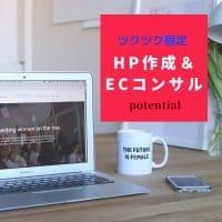 ホームページ作成&ECコンサル/ツクツクショップ専用1時間チ...