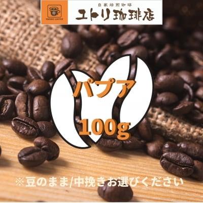パプア 100g【自家焙煎コーヒー豆】