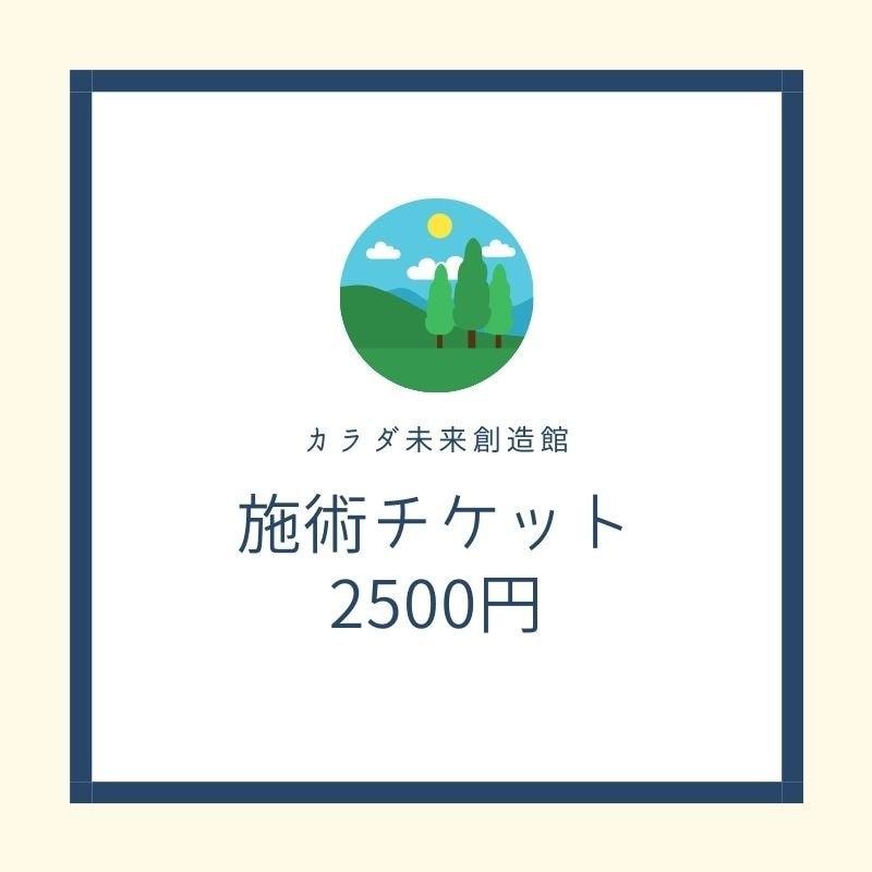 施術チケット2500円のイメージその1