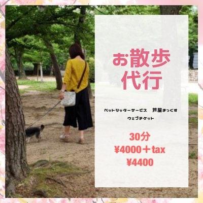 お散歩代行(犬)30分/兵庫県芦屋市近郊