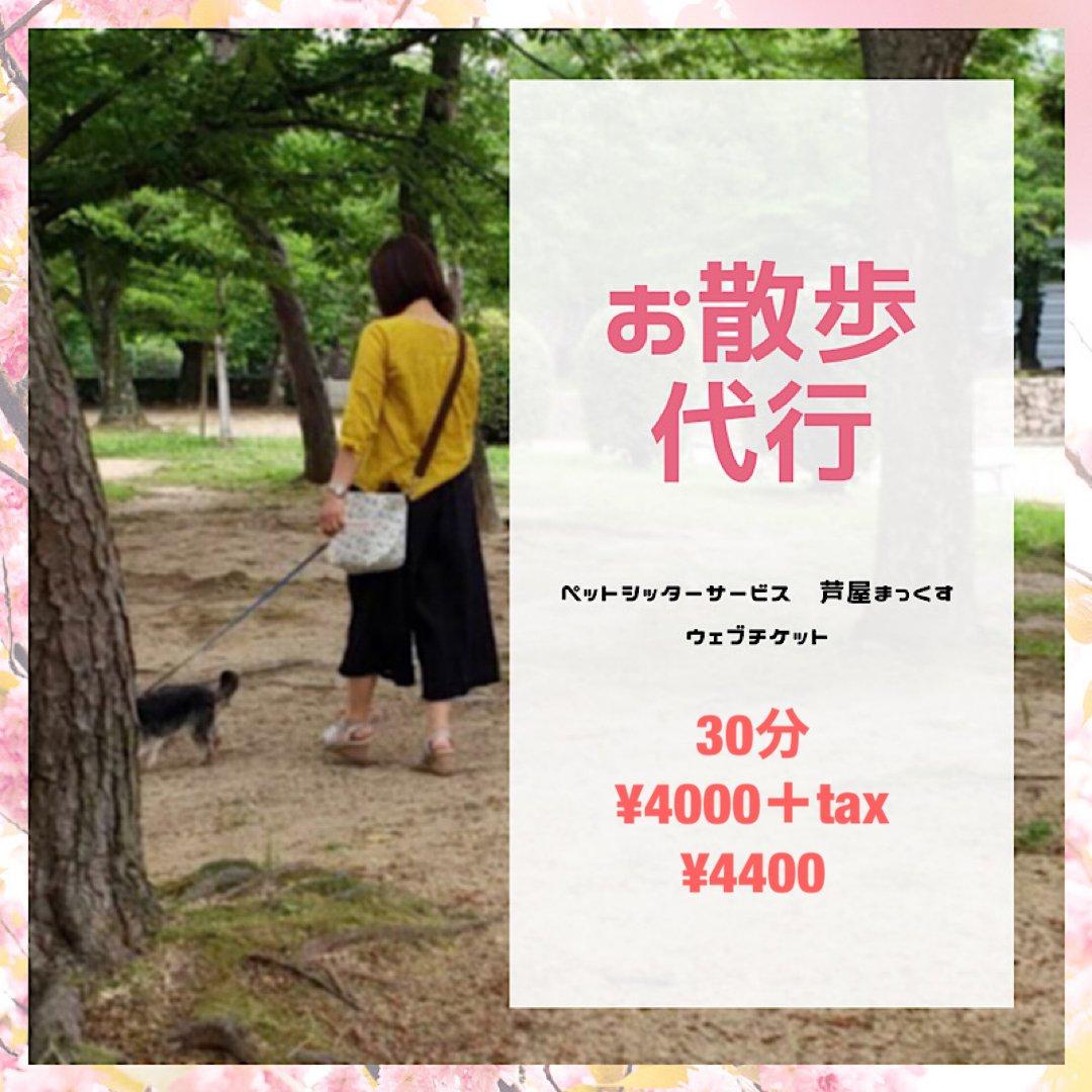 お散歩代行(犬)30分/兵庫県芦屋市近郊のイメージその1
