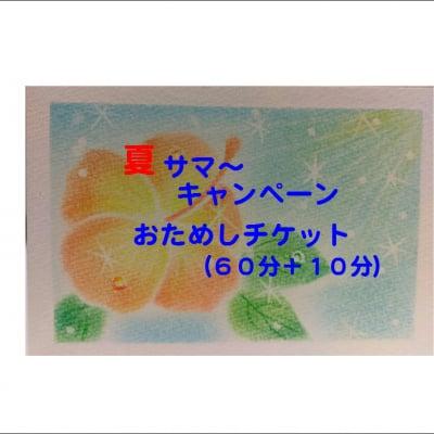 夏サマ〜キャンペーンおためしチケット