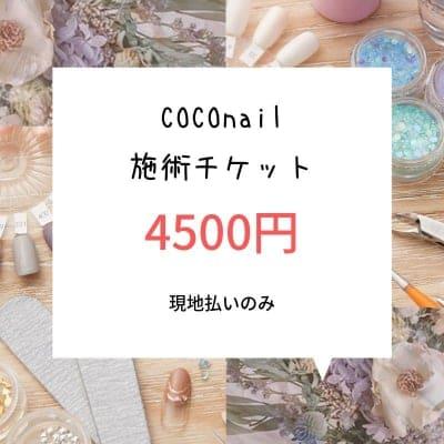 COCOnailコース(季節に合わせたオリジナルデザイン。当店にてお選びいただけます)