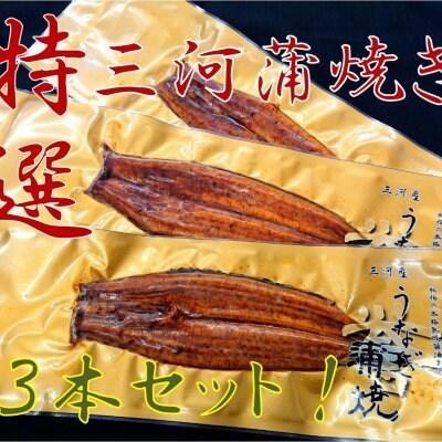 【送料無料】特選三河産蒲焼き3本