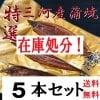 特選三河産蒲焼き5本
