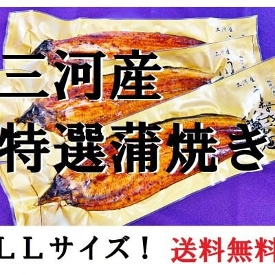 new特選三河産蒲焼き3本(LLサイズ)