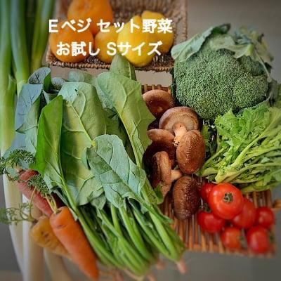 【送料無料!初めての方限定!初回限り】Eベジ野菜 Sサイズ お試しセット