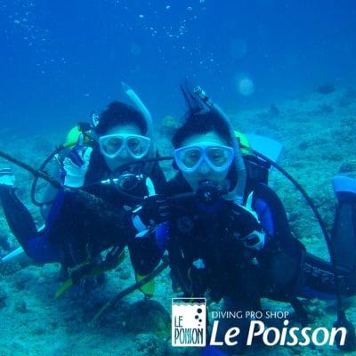 海洋での体験ダイビング