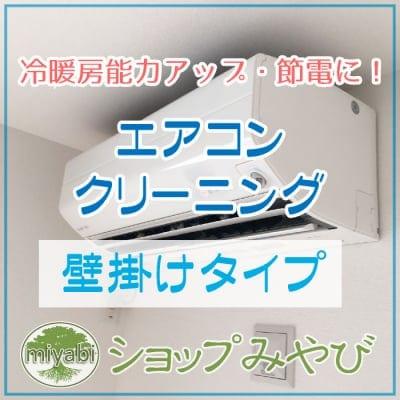 エアコン本体クリーニング (壁掛けタイプ)  ◆現地払い専用◆