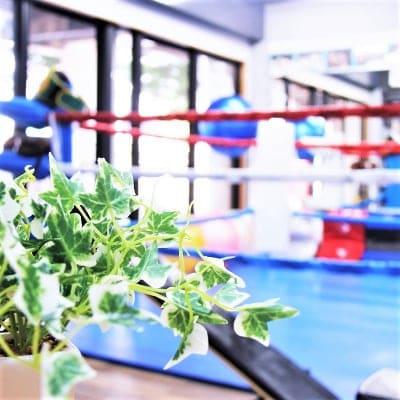 【キックボクシング】体験レッスン 初めてでも安心! ※お一人様1回限り ※現地にて現金払いとなります