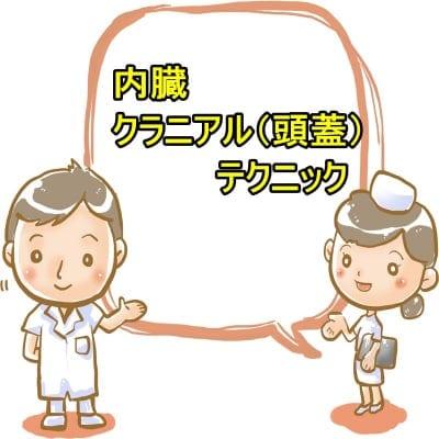 内臓・クラニアル(頭蓋)テクニック