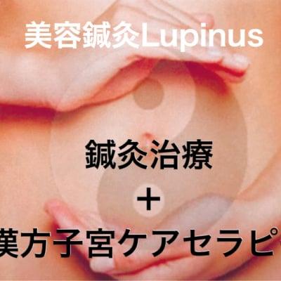 【現地店頭払い専用】【初回体験チケット】鍼灸メソッド〈漢方子宮ケアセラピー〉*美容鍼灸Lupinus