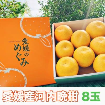 【愛媛県産】河内晩柑|ご家庭・友人・贈答用|8玉