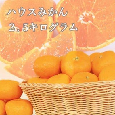 【愛媛県産】ハウスみかん|ご家庭・友人・贈答用|2.5kg