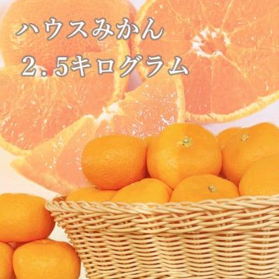 【愛媛県産】ハウスみかん ご家庭・友人・贈答用 2.5kg
