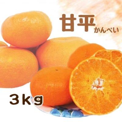 【愛媛県産】甘平|かんぺい|ご家庭・友人・贈答用|3kg