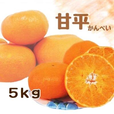 【愛媛県産】甘平|かんぺい|ご家庭・友人用|5kg